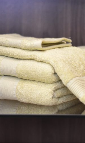 Jean Perry Beverly Hills Towels